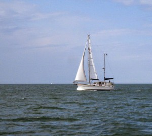 31 Oisin on Passage to Lymington